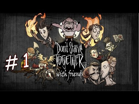 A beautiful new world - Don't Starve Together - PART 1