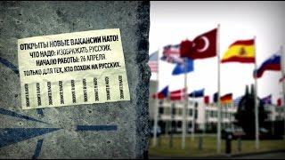 Вакансия для «русского»: НАТО ищет статистов на военный полигон