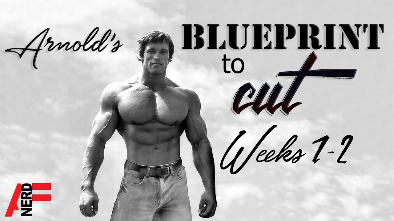 Arnold schwarzeneggers blueprint to cut week 1 2 overview youtube arnold schwarzeneggers blueprint to cut week 1 2 overview malvernweather Image collections