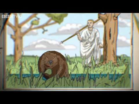 A History of Britain's Beavers - The Animal's Guide To Britain, Episode 1 Preview - BBC Two