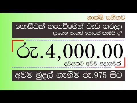 Make money online sinhala - how earn $663 per month for free   legit app Paypal Cash 2021 (Sinhala)