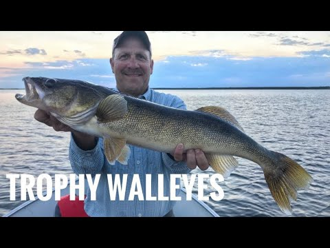 Manitoba Fly In Trophy Walleye Fishing