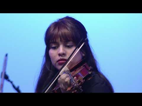 El Sistema de Orquestas Juveniles de Jujuy brilló en el Concierto Iguazú 2019