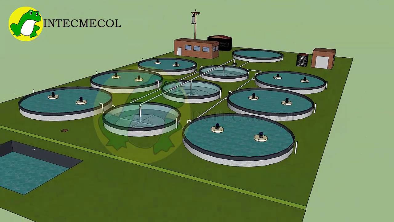 Proyecto piscicola con biofloc en tanques austalianos for Tanques para peces geomembrana