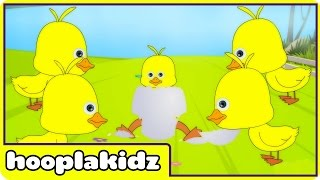 Five Little Ducks | Nursery Rhymes by Hooplakidz