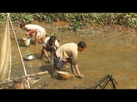 Bangladeshi Fishing 2014 - Part 3 Full HD