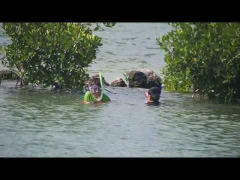 Hillel Day School of Boca Raton Seacamp 2014