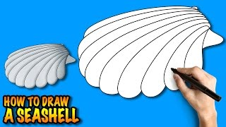How to draw a Seashell - Easy step-by-step drawing tuturial