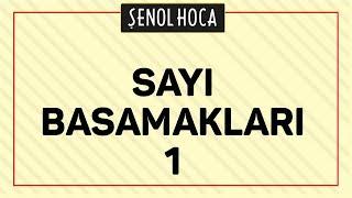 SAYI BASAMAKLARI 1 - ŞENOL HOCA