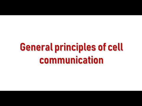 General Principles Of Cell Communication