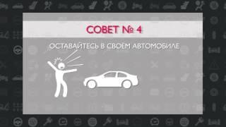 Дорожная безопасность. Выпуск 8