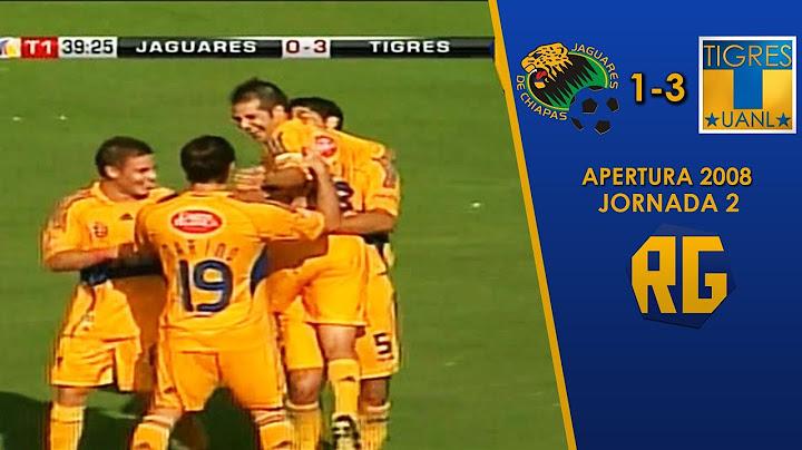 jaguares 13 tigres  jornada 2 apertura 2008  liga mx  resumen goles