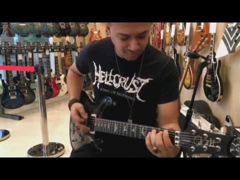 PRS Floyd custom 24 plug to prs archon - metal tone (indonesia)