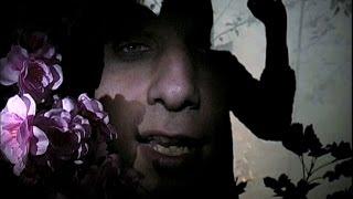 Jens Friebe - Neues Gesicht  HD