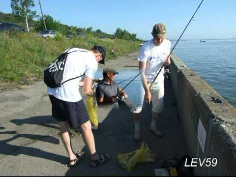 рыбалка в ульяновске 2016 видео