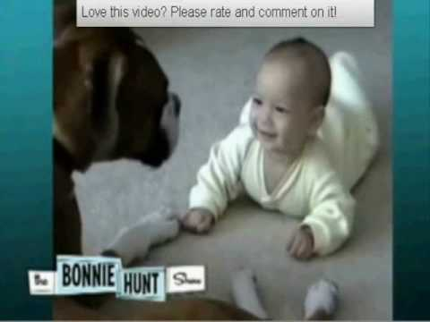 Cute Dog and Baby Video