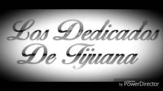 El Huizache-Los Dedicados De Tijuana-En vivo