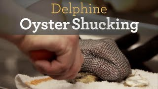 Oyster Shucking Tools and Tutorial - Inside My Kitchen
