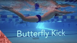 Butterfly swimming kick. Improve your underwater and fly kick. Beginners and Intermediate