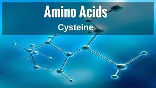Amino Acids - Cysteine