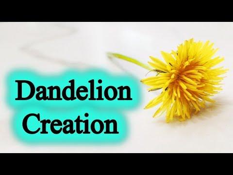 Amazing Creation!