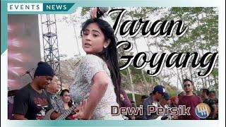Download DEWI PERSIK - JARAN GOYANG (BISA TURUN NGGAK ??? kwkwkwk, LIVE SAMARINDA)