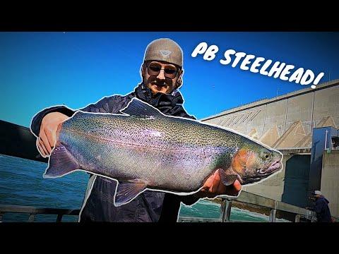 Float Fishing For Steelhead Yields Multiple GIANTS + BONUS SALMON   Fishing The Niagara River