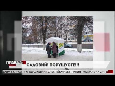 НТА - Незалежне телевізійне агентство: Порушення закону про вибори команді Андрія Садового закидає правозахисна організація