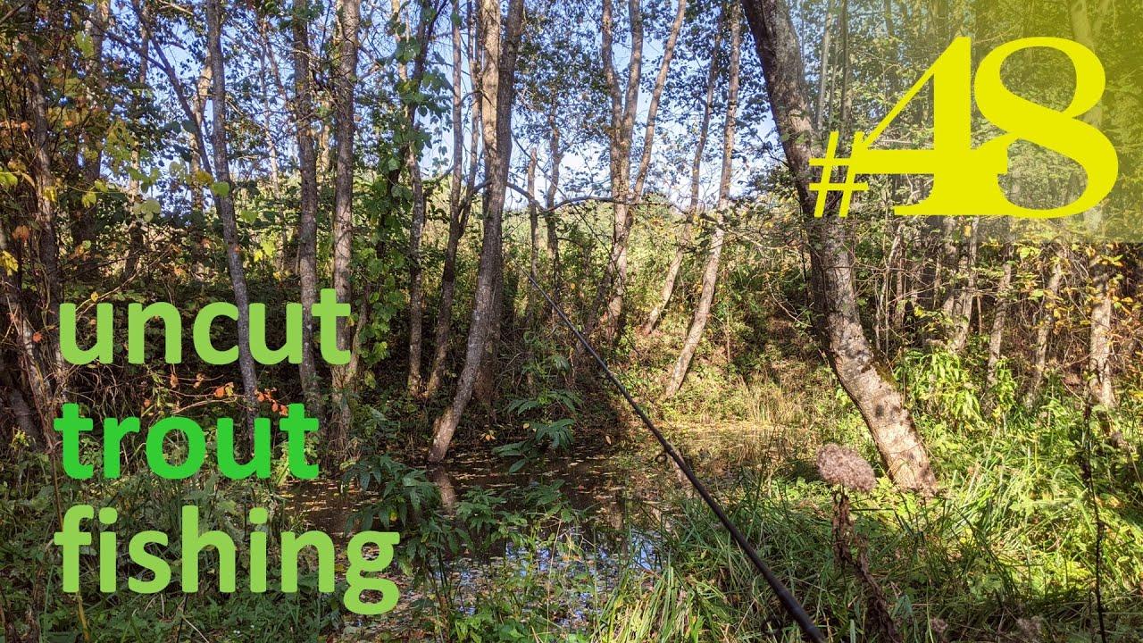 Three Beaver Dams | Uncut Fishing #48