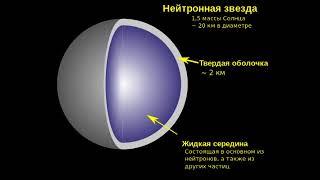 Нейтронные звезды (рассказывает астрофизик Сергей Попов)