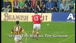 Hurling - The Fastest Game on Grass