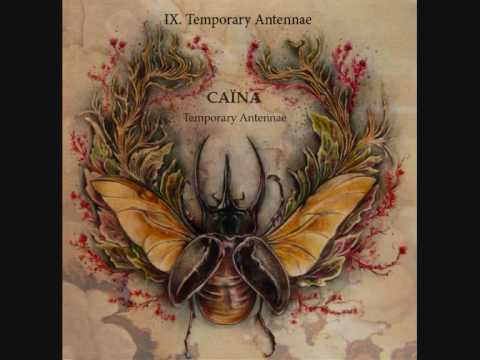 9. Temporary Antennae