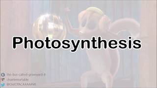 All Hail King Julien - Photosynthesis - Lyrics
