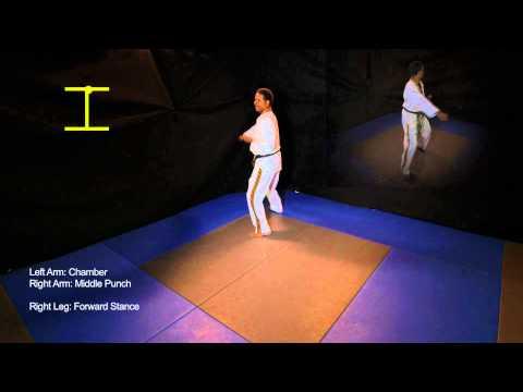 Basic Form 2 - Taekwondo