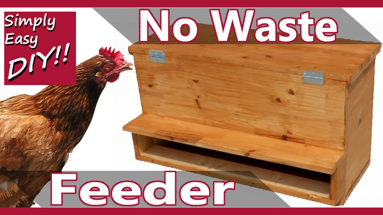 Zero Waste Chicken Feeder Youtube