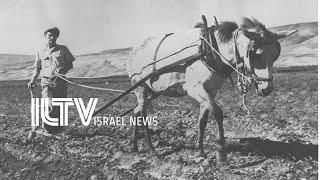 A tour of Israeli history - Anat Harrel