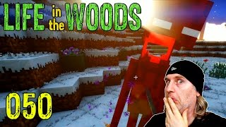Minecraft [050] [Ender im Glück] [Life in the Woods] Deutsch German thumbnail