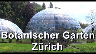 Der Botanische Garten Zürich (UZH)