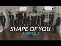 Ed Sheeran - Shape of You  [Acapella]
