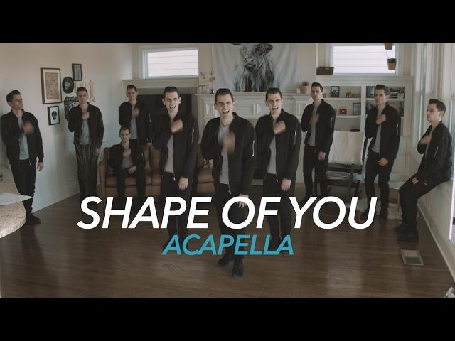 Ed Sheeran Shape Of You Acapella