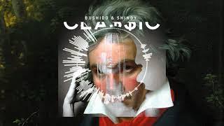 Bushido & Shindy x Beethoven - Gravitation (LTKMusic Remix)