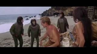 "Отношение к бороде в фильме ""Планета обезьян"" (1968).mp4"