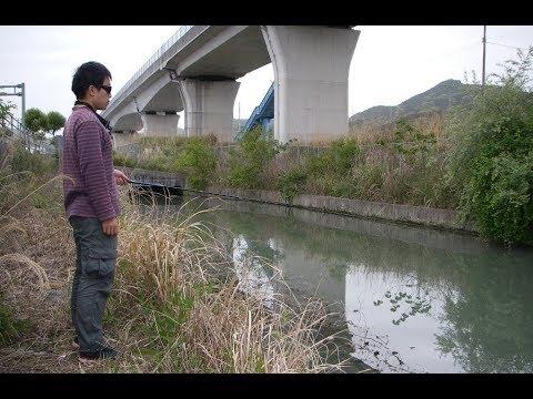 高速�路下�水路�釣り����