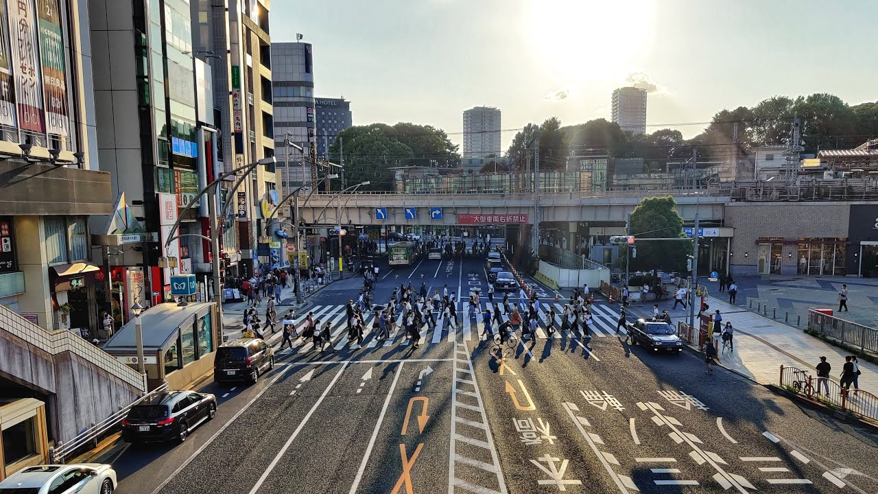 Live Tokyo Walk - Weekend In Ueno 上野散歩