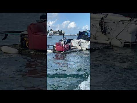 Guard-Dog-Protects-Boat-Passing-By-ViralHog