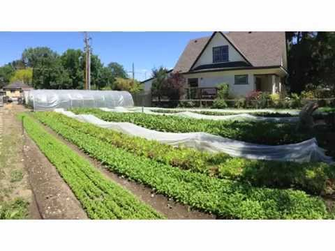 Profitable Urban Farming with Curtis Stone (workshop Intro)