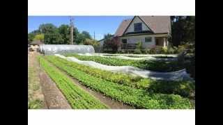 Profitable Urban Farming with Curtis Stone (workshop Intro)