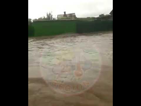 «Какой ужас»: еще один населенный пункт ушел под воду в Приморье