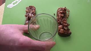 ЯЙЦА. Самый странный рецепт Яиц с абрикосами. Готовим яйца редким необычным способом.