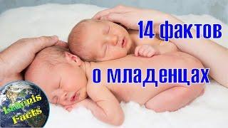 14 невероятных фактов о младенцах
